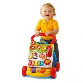 Primeiros Passos Interativo - VTech Baby